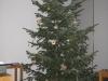 Strohsterne am Tannenbaum - Wegweiser als Symbol